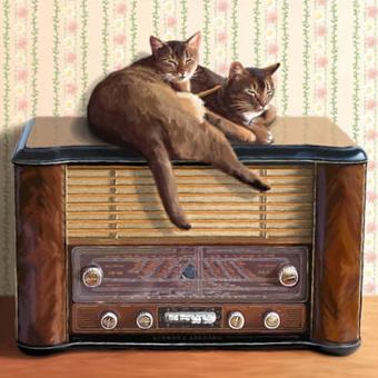 Catsonradio2_2